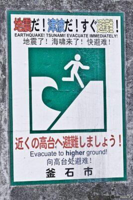 Tōhoku Tsunami - Tsunami