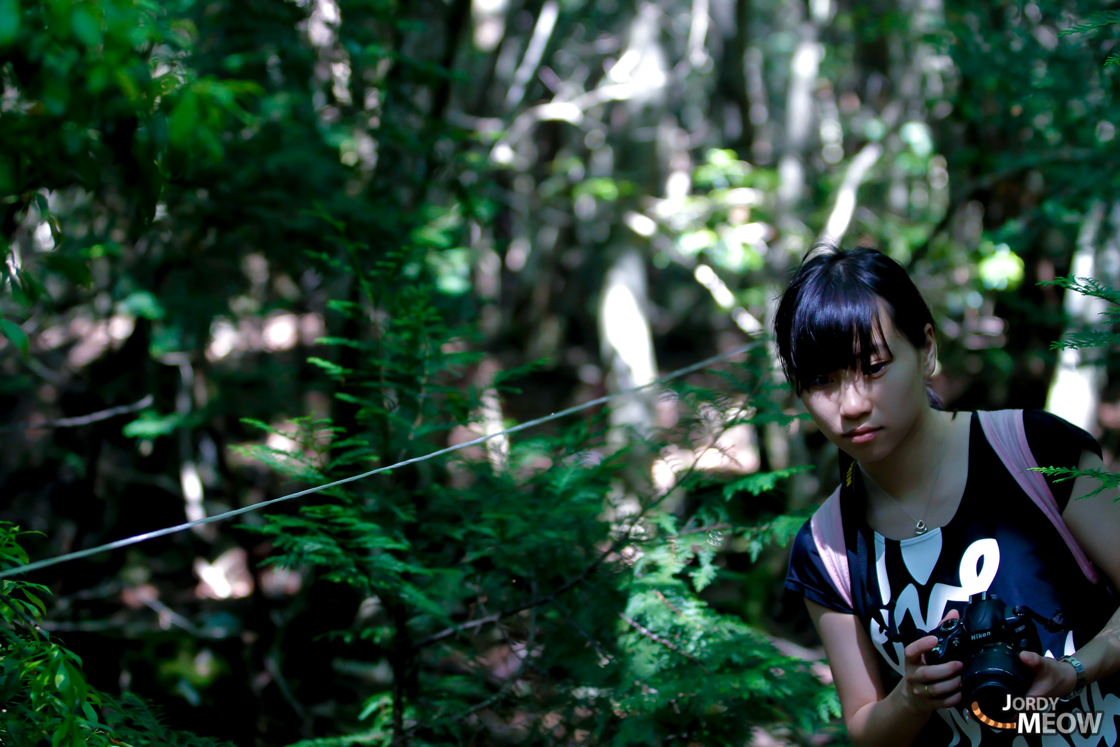 Jing, aokigahara, chinese, chubu, forest, japan, japanese, natural, nature, people, yamanashi