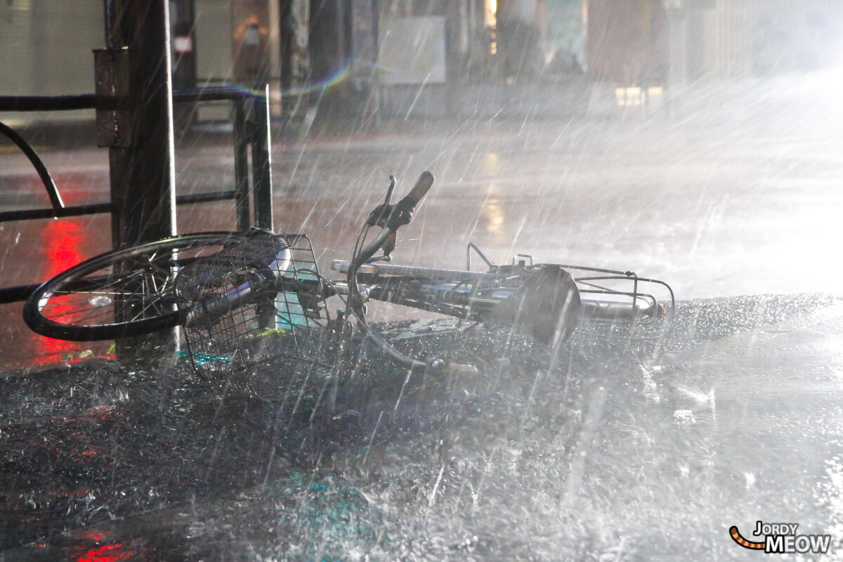 Typhoon - Bike