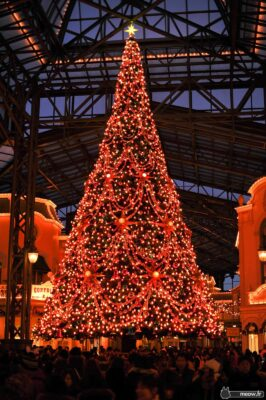 Disneyland - Christmas Tree