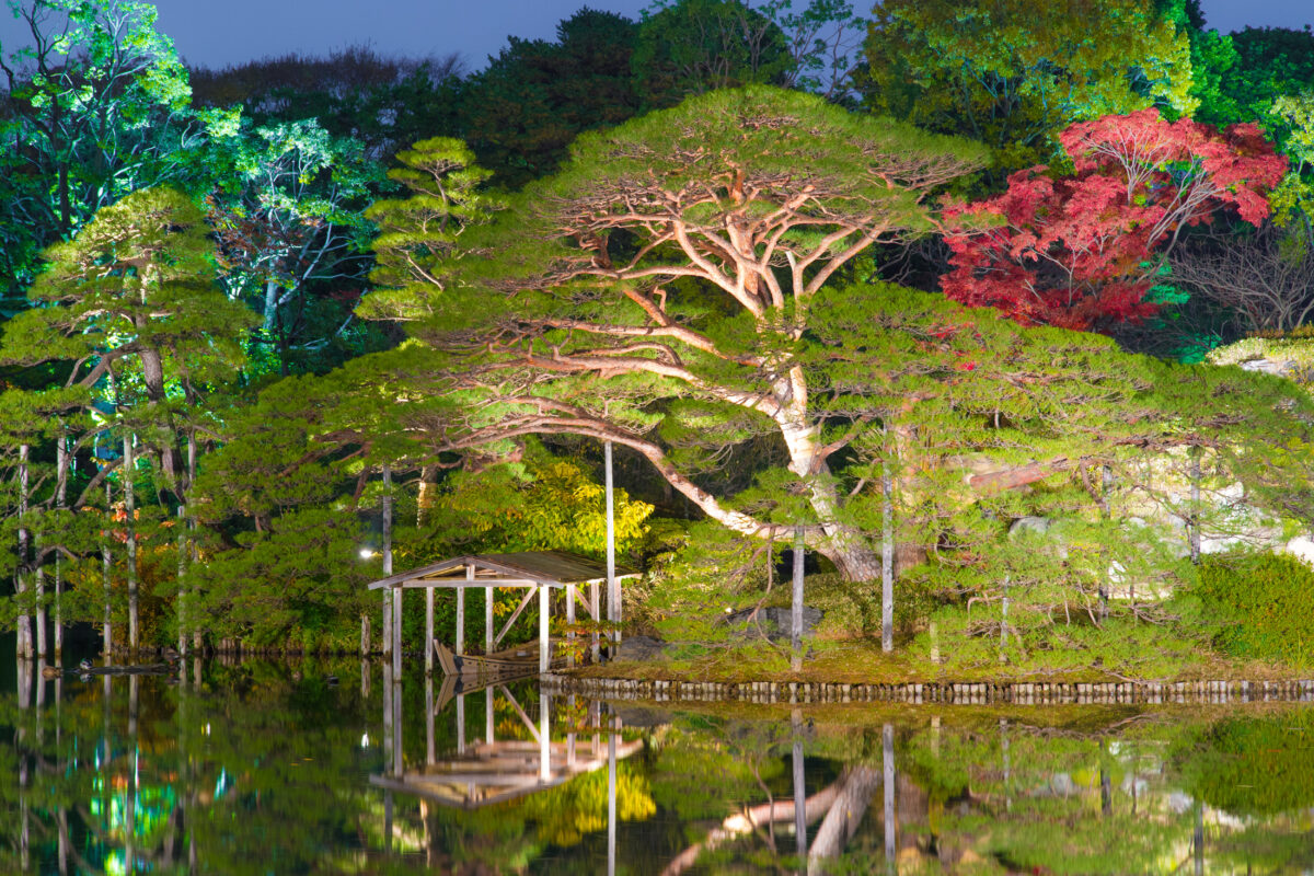 Rikugien Garden Autumn By Night