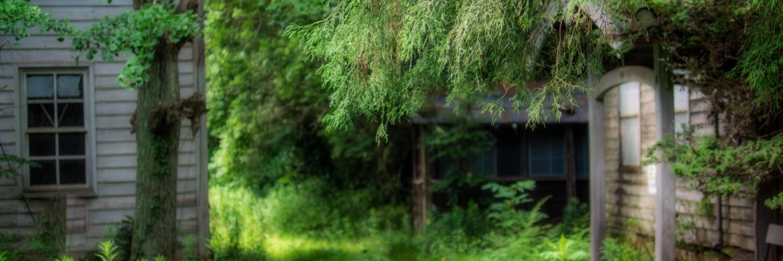 abandoned, haikyo, hospital, japan, japanese, kanto, ruin, urban exploration, urbex