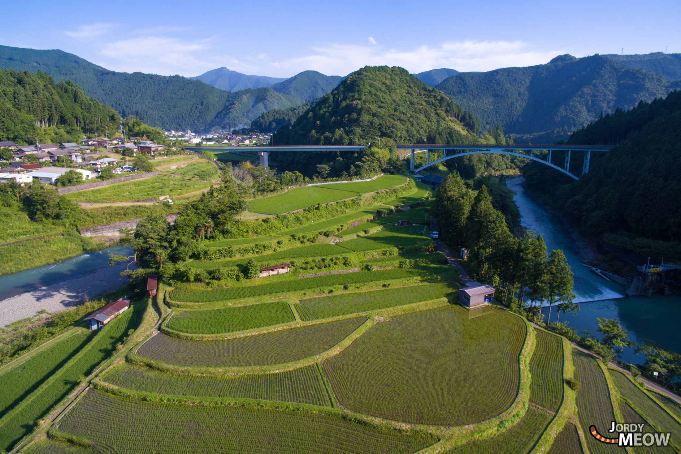 drink, drone, food, japan, japanese, kansai, natural, nature, rice, ricefield, wakayama